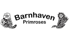 Barnhaven